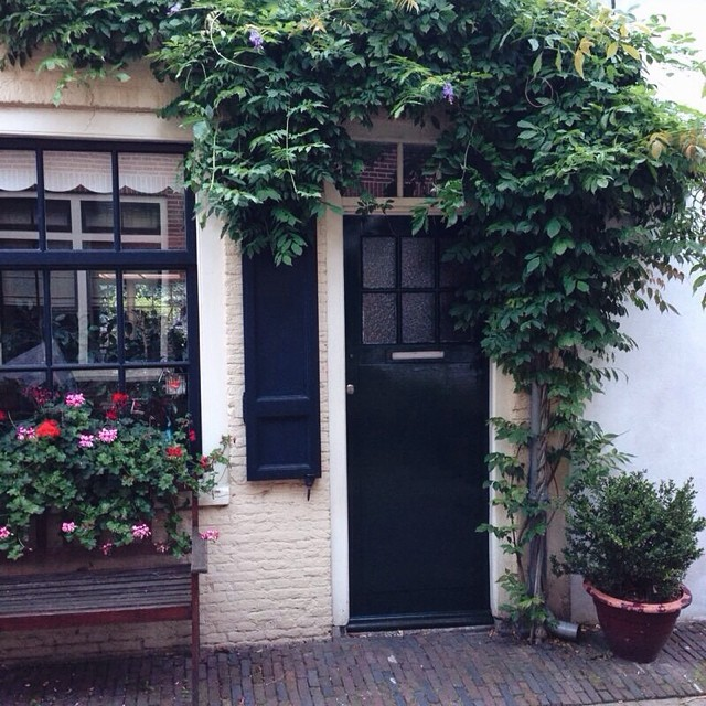 house in Haarlem