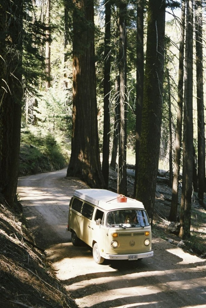 VW van in the woods