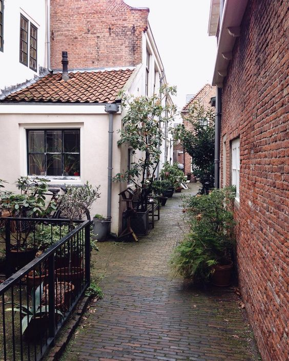 Favorite Alley in Haarlem